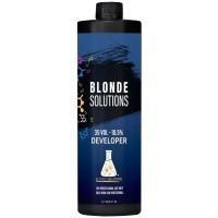 Blonde Solutions Pigmented Developer 34oz 35 Vol