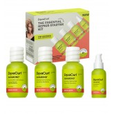 DevaCurl Essential Starter Kit - Repair
