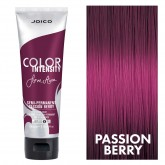 Joico Color Intensity Passion Berry 4oz
