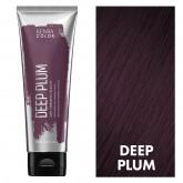 Kenra Color Creatives Deep Plum 4oz