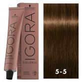 Igora Color10 5-5 Light Brown Gold 2oz