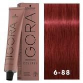 Igora Color10 6-88 Dark Blonde Red Extra 2oz