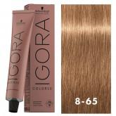 Igora Color10 8-65 Light Auburn Gold Blonde 2oz