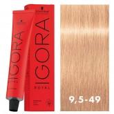 Igora Royal 9.5-49 Platinum Blonde Beige Violet 2oz