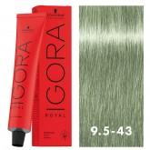 Igora Royal 9.5-43 Pastel Mint Toner 2oz