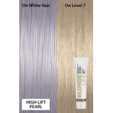 "<span class=""highlight"">Joico Blonde Life</span> Hyper High Lift Pearl ..."