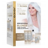 "<span class=""highlight"">Joico Blonde Life</span> The Stylist Try Me Kit ..."