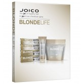 Joico Blonde Life Swatch Book