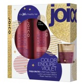 Joico Holiday 2018 Color Endure Violet Shampoo Conditioner 10oz Duo 2pk