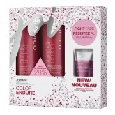 Joico Holiday 2019 Color Endure 10oz 2pk