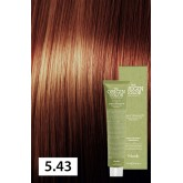 Nook The Origin Color 5.43 Light Chestnut Copper Gold 3oz