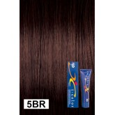 Iso Color 5br Dark Chocolate Rasberry Brown (5rb)