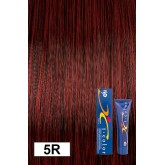Iso Color 5r Deep Auburn Red Old Red Chestnut
