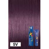 Iso Color 5v Burgundy