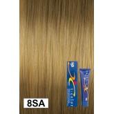Iso Color 8sa Light Soft Ash Blonde