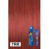 Iso Color 7rr Burmese Ruby