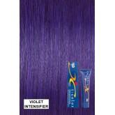 Iso Color V Intensifiers  Violet Inv