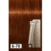 Igora Royal Absolutes 6-70 Dark Blonde Copper Natural 2oz