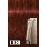 Igora Royal Absolutes 6-80 Dark Blonde Red Natural 2oz