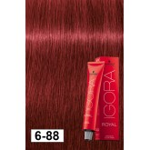 Igora Royal 6-88 Light Red Fire Dark Blonde 2oz