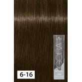 Igora Royal 6-16 Raw Essentials Dark Brown Cendre Chocolate 2oz