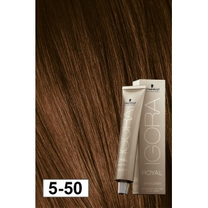 Igora Royal Absolutes 5-50 Light Brown Gold Natural 2oz