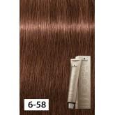 Igora Royal Absolutes 6-580 Dark Blonde Gold 2oz