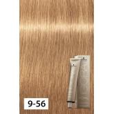Igora Royal Absolutes 9-560 Extra Light Blond Gold Chocolate 2oz