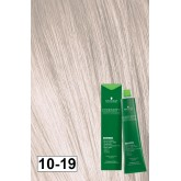Essensity 10-19 Ultra Light Ash Violet Blonde