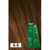 Essensity 5-5 Light Brown Gold