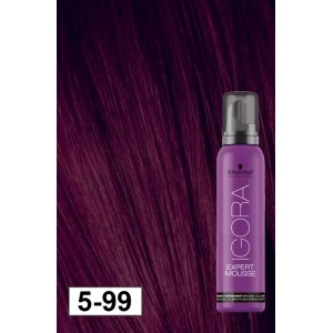 412e5d5c4e Igora Expert Mousse 5-99 Light Brown Violet Extra - Modern Beauty ...