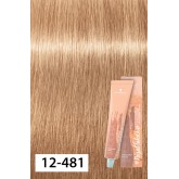 Igora Royal Disheveled Nudes 12-481 Special Blonde Beige Red Cendre 2oz
