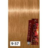 Igora Royal Opulescence 9-57 X Light Blonde Gold Copper 2oz