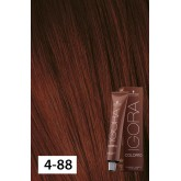 Igora Color10 4-88 Medium Brown Red Extra 2oz