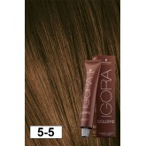 Igora Color10 5-5 Light Brown Gold 2oz