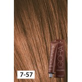 Igora Color10 7-57 Medium Blonde Gold Copper 2oz