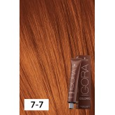 Igora Color10 Fashion Shade 7-7 2oz