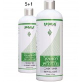 Segals Solutions Dandruff Retail Duo 5+1